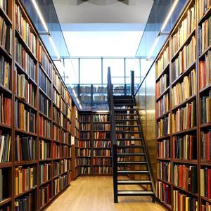 Библиотеки Львовского